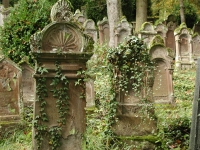 Houses of Life: Horb's Jewish Cemeteries—Death and Mourning in Judaism